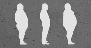 Hacer dieta te engorda