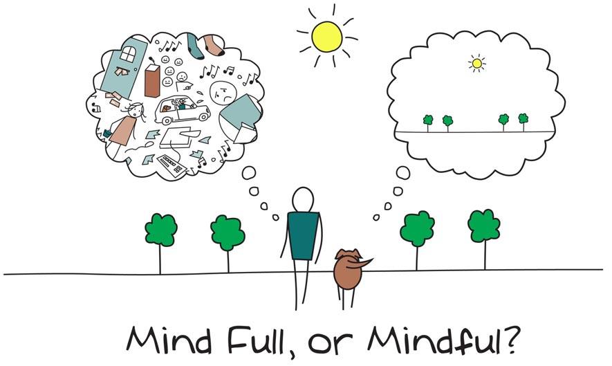 Aquí y ahora, algunos beneficios del mindfulness