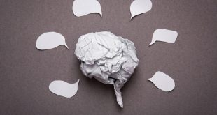 6 preguntas y respuestas sobre el cerebro