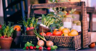 verduras crudas o cocidas