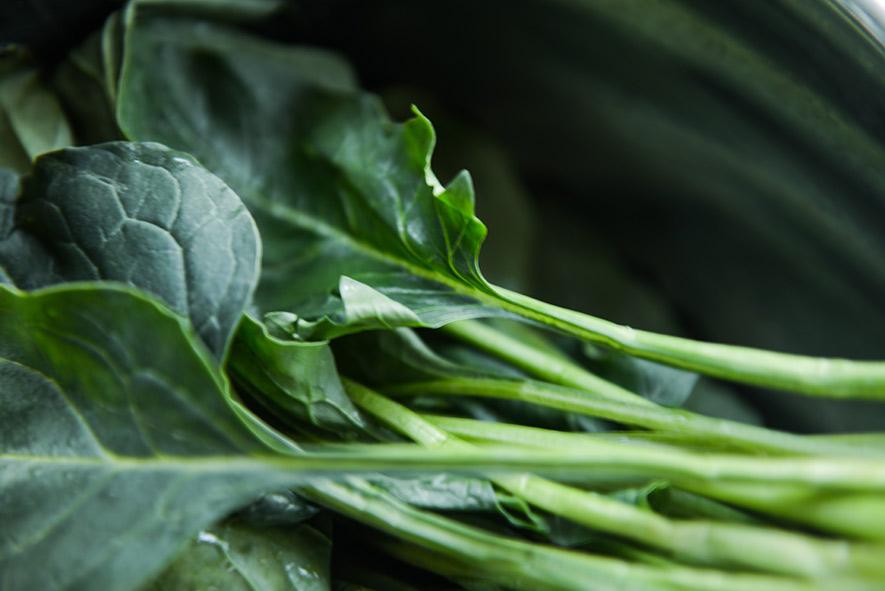 Los vegetales verdes son los alimentos que más faltan en las dietas modernas